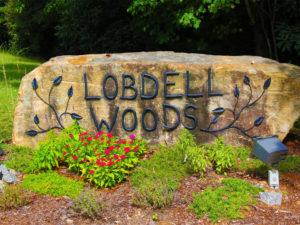 Lobdell Woods