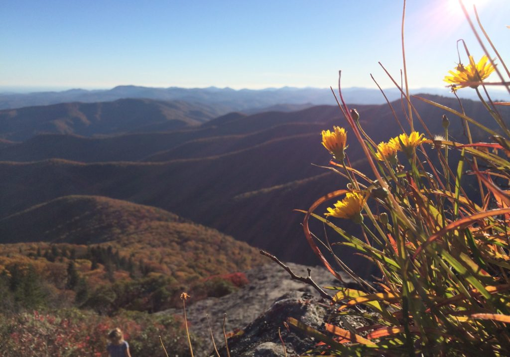 Autumn View over Mountains in Western North Carolina
